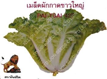 Pai Tsai 427