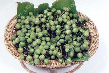 Puang Yok